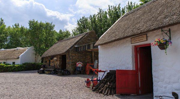 The Bog Village